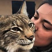 Продажа котят красивой РЫСИ!!!Канадской и Европейской рыси